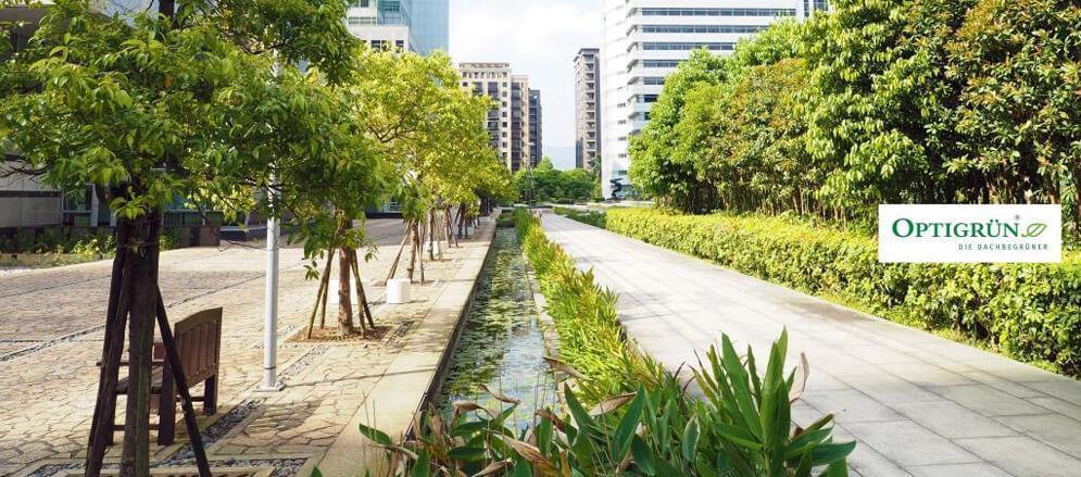Photo d'un trottoir avec système de récupération d'eau de pluie souterrain