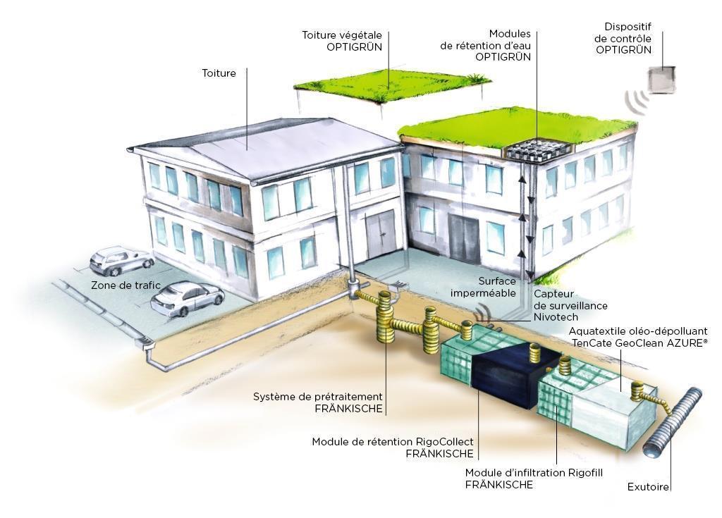 """Schéma de récupération de l'eau pluviale via des toitures dites """"vertes"""""""